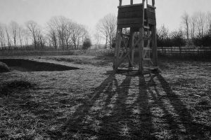 14_altman_15010245a_tower_shadow_r_adj.jpg