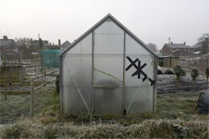 Allotment Architecture - Greenhouse by Lesley Farrell