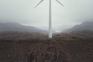 GS_Environment_TurbinesRoots_NoBorder_2000px.jpg