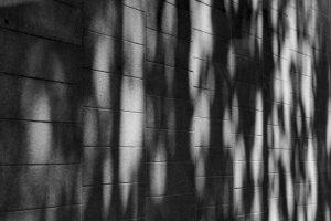 Essence-3.jpg