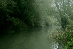 Misty-Morning-River-Mole-CROPPED-1500px.jpg