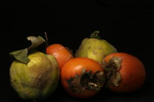 Louise_Ward-Qunice-and-Persimmon-72dpi.jpg