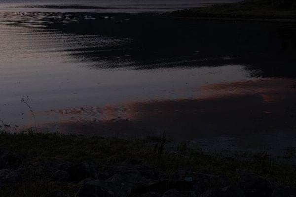 Cove-ParkRachel-Wallace05.jpg