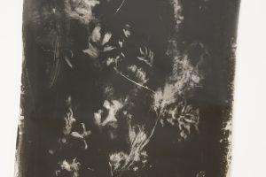 inner-landscapes-15.jpg