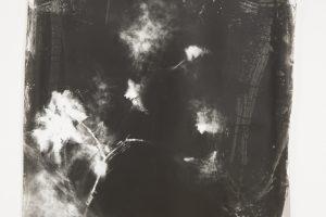 inner-landscapes-60.jpg