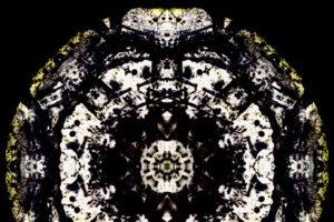 Elemental-Eidos-6-2x2c9d3ad9951.jpg