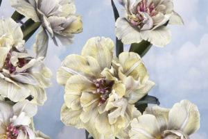 Tulips-for-McQueens-Flowersd417b6607d.jpg