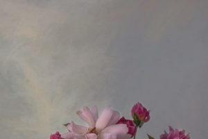 Sue-Oakford-Roses-Linenf36db94870.jpg