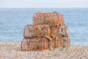 Mary-Thompson-Lobster-pots3e5a1c239e.jpg