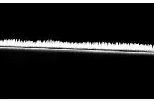 Space-Like-Time-153-full-size-3000af35fa4fa2.jpg