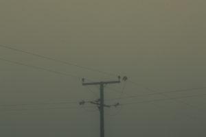 WIP_-a-blanket-of-woven-shadows-_David-Copeland-45a5f979638.jpg