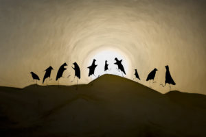 The-Herons-Danceb071247c94.jpg